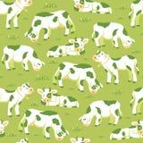 Koeien op de achtergrond van het gebieds naadloze patroon Royalty-vrije Stock Foto's