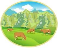 Koeien op de weiden Ellipsbeeld Stock Afbeeldingen