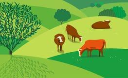 Koeien op weide vector illustratie