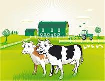 Koeien op weiland stock illustratie