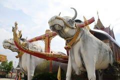 Koeienstandbeeld in de tempel van Thailand Stock Foto