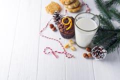 Koekje met melk en Kerstmisboom royalty-vrije stock foto