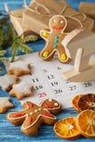 Koekjes van de Kerstmis de eigengemaakte peperkoek, kruiden en scherpe raad Royalty-vrije Stock Foto