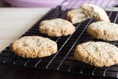 Koekjes van het gluten de vrije eigengemaakte havermeel bij het koelen van horizontaal rek, Stock Afbeelding