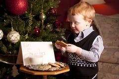 Koekjes voor de Kerstman Stock Foto's