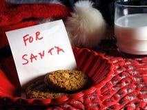Koekjes voor Kerstman Royalty-vrije Stock Foto's