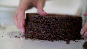 Koekjescake in een besnoeiing De cake van het chocoladekoekje stock footage