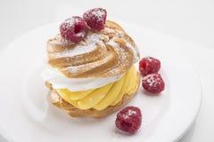 Koekjescake met frambozenbessen op een witte plaat Royalty-vrije Stock Foto's
