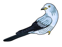 Koekoeksvogel royalty-vrije stock foto