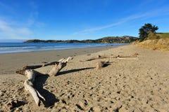 KoeKohe beach at Otaga New Zealand Stock Photo