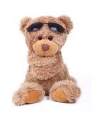 Koel beer Royalty-vrije Stock Afbeeldingen