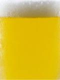Koel bier Royalty-vrije Stock Afbeeldingen