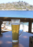 Koel bier Royalty-vrije Stock Foto