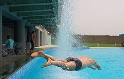 Koel duikvlucht. royalty-vrije stock foto