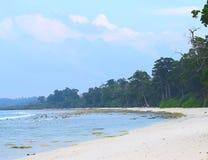 Koel en Afgezonderd Steenachtig Strand met Kustbos met Overzeese Mahua Bomen - Laxmanpur, Neil Island, Andaman Nicobar, India stock afbeeldingen