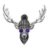 Koel modieuze dierlijke Uitstekende de stijlillustratie van hertenhipster voor tatoegering, embleem, embleem, kentekenontwerp vector illustratie