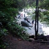 Koel weg bij Capilano-Rivier in de zomer royalty-vrije stock foto's