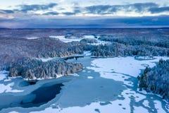 Koele blauwe, vroege de wintermening van een meer en bos royalty-vrije stock foto's