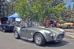 Koele Cobra's Royalty-vrije Stock Fotografie