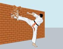 Koele karateist Stock Foto's
