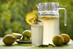 Koele limonade en citroenen in de zomer op een groene achtergrond Stock Afbeelding