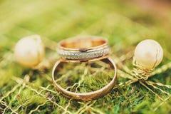 Koele ringen en oorringen Royalty-vrije Stock Foto's