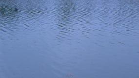 Koele wateren Royalty-vrije Stock Foto