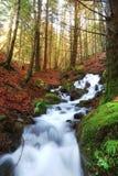 Koele waterval Stock Afbeeldingen