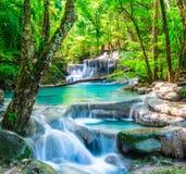 Koele waterval in diep bos Stock Fotografie