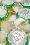 Koeler 2 van de drank royalty-vrije stock afbeeldingen