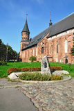 Koenigsberg Сathedral on Kneiphof island. Kaliningrad (former K Stock Photography