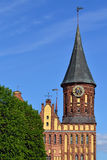 Koenigsberg Cathedral. Symbol of Kaliningrad, Russia Royalty Free Stock Images