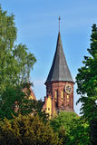 Koenigsberg Cathedral - symbol of Kaliningrad, Russia Royalty Free Stock Images