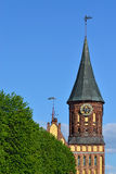 Koenigsberg Cathedral, symbol of Kaliningrad. Russia Stock Photography