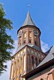 Koenigsberg domkyrka - gotisk tempel av det 14th århundradet. Kaliningrad (till Koenigsberg 1946), Ryssland fotografering för bildbyråer