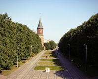 Koenigsberg-Kathedrale, Russland Stockbild