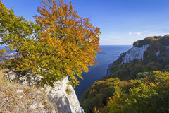 Koenigsstuhl in de herfst Stock Afbeelding