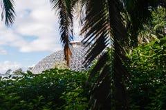 Koepel bij stads botanische tuinen Stock Fotografie