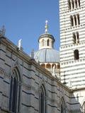 Koepel van de kathedraal van siena stock foto
