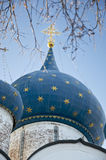 Koepel van de kathedraal van de Geboorte van Christus in Suzdal het Kremlin Stock Fotografie