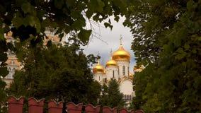 Koepel van de Tempel van Moskou het Kremlin Stock Foto
