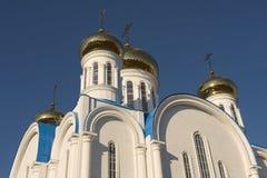 Koepels van de kathedraal van Astana-stad, Astana, Kazachstan royalty-vrije stock foto's