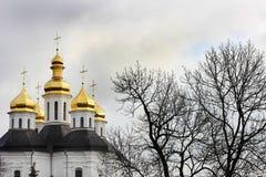Koepels van de kerk Kerk stock afbeeldingen