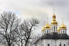Koepels van de kerk Kerk royalty-vrije stock afbeeldingen