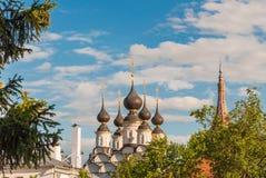 Koepels van de Orthodoxe Kerk in Suzdal, Rusland Gouden Ring van Rusland stock afbeeldingen