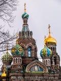 Koepels van de Orthodoxe Kerk van de Verlosser op Bloed in St Peter Stock Afbeelding