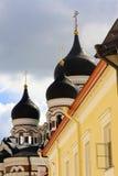 Koepels van Tallinn, Estland Royalty-vrije Stock Afbeeldingen