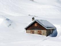 Koestal in de diepe sneeuw is gedaald die Royalty-vrije Stock Afbeelding