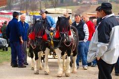 Koetsier On Annual Fair Stock Fotografie