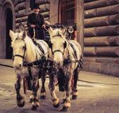 Koetsier in Florence Stock Afbeeldingen